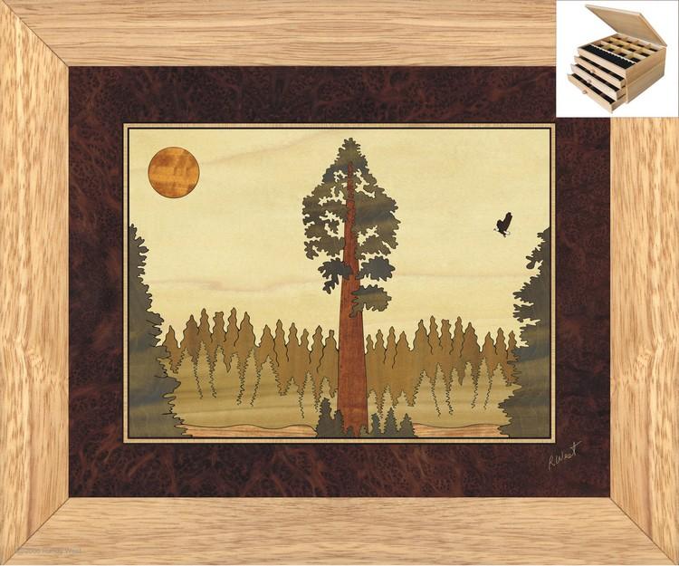 Redwood Sequoia Jewelry Box 3 Drawer