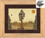 Giant Redwood Sequoia - Jewelry Box 10x12