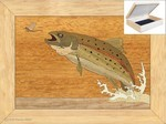Trout and Mayfly - Jewelry Box 4x5