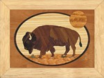 Buffalo -  Wall Art 6x8