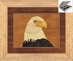 Eagles Head - Jewelry Box 10x12