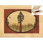 Giant Redwood Sequoia - Jewelry Box 6x8