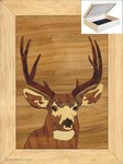 Head Buck - Jewelry Box 4x5